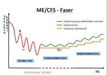 MECFS-faser