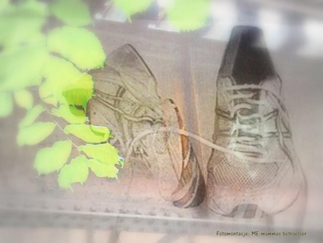 Kollasje-skoene